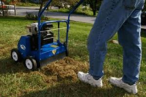 De-thatching a lawn